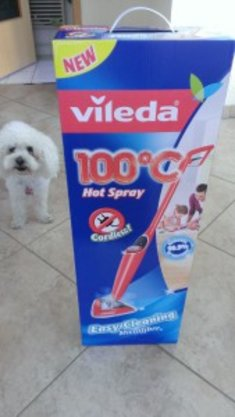 Vileda 100°C Hot Spray im Test